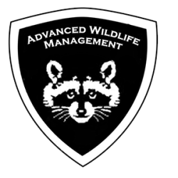 Animal removal Warren County Ohio