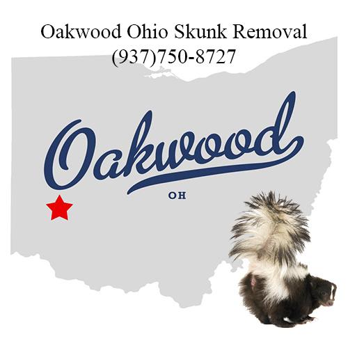 oakwood ohio skunk removal