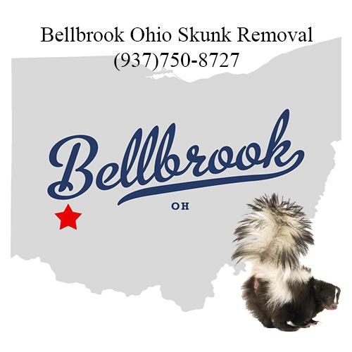 bellbrook skunk removal ohio