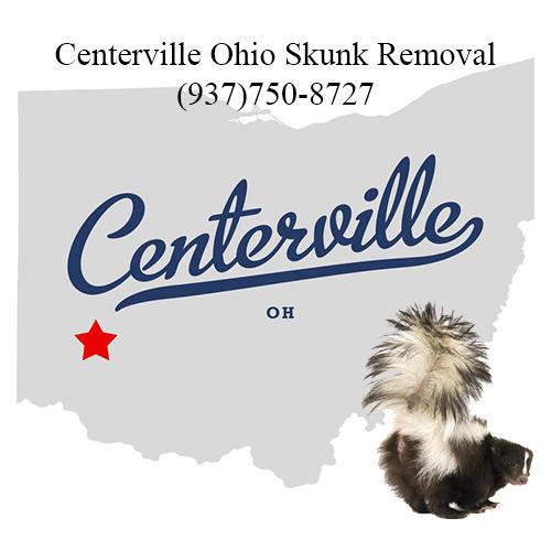 centerville ohio skunk removal
