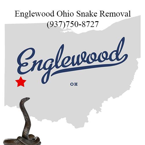 englewood ohio snake removal