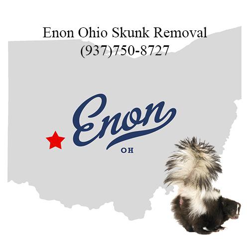 enon ohio skunk removal