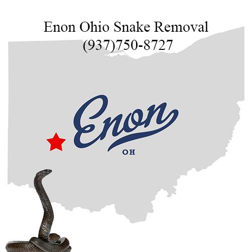 enon ohio snake removal