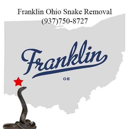 franklin ohio snake removal