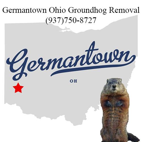 germantown ohio groundhog removal