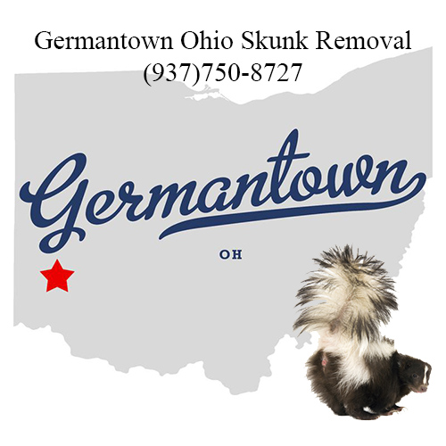 germantown ohio skunk removal