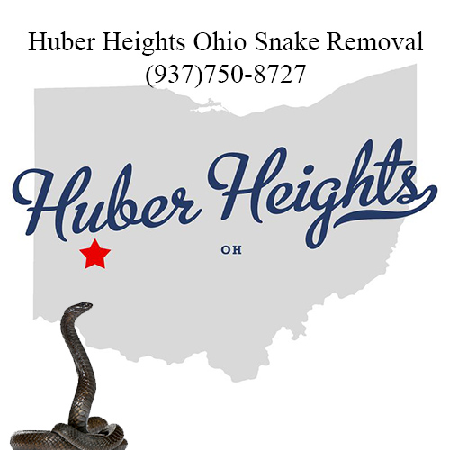 huber heights ohio snake removal