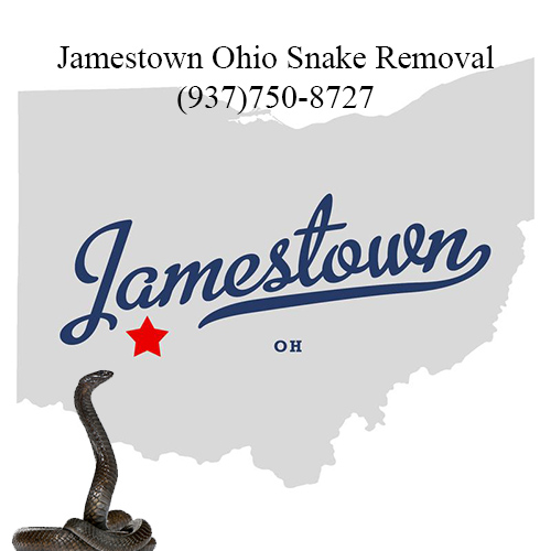 jamestown ohio snake removal