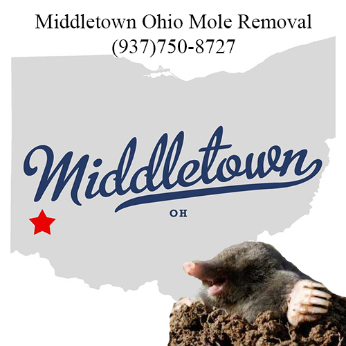 middletown ohio mole removal