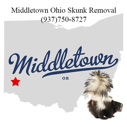 middletown ohio skunk removal
