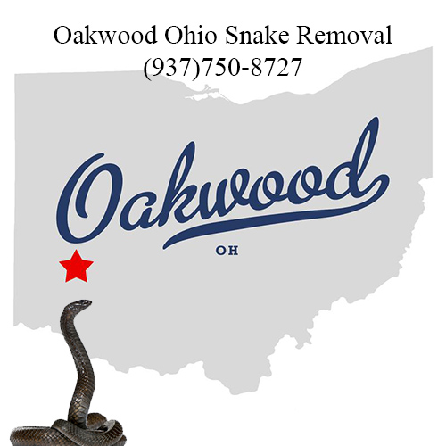 oakwood ohio snake removal