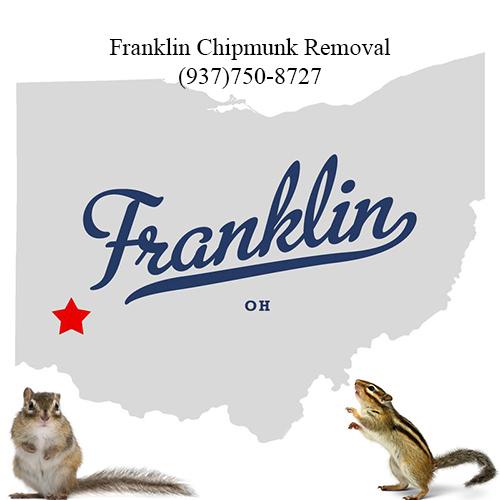 franklin chipmunk removal (937)750-8727
