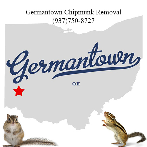germantown chipmunk removal (937)750-8727
